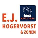 EJ-Hogervorst-en-zonen---Multiflora-Hyacint