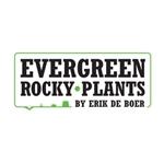 Evergreen-Rocky-Plants-by-Erik-de-Boer