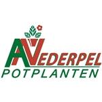 A-Nederpel-potplanten