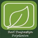 Raël-Duijvestijn-potplanten